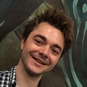 Wordpress Plugins Profi Oliver Gehrmann